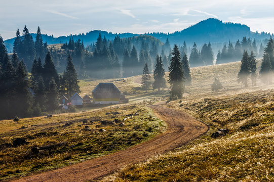road  near foggy forest in mountains at sunrise