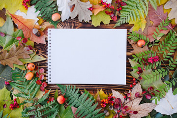 Autumn composition with notebook and colorful leaves on wooden background. Top view, flat lay, copy space.