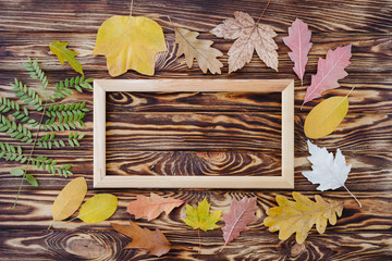 Autumn composition of colorful leaves and picture frame on wooden background. Top view, flat lay, copy space. Thanksgiving day concept.