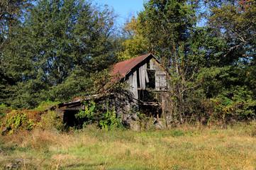 Arkansas Barn Overgrown