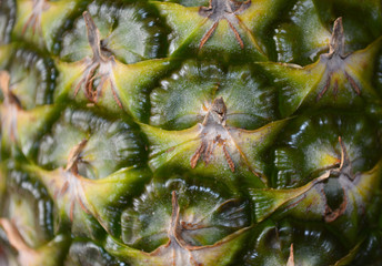 Pineapple Skin Close Up