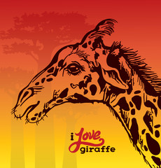 Graphic giraffe and baobabs. Hand drawing illustration.