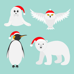 Arctic polar animal set. White bear, owl, king penguin Emperor Aptenodytes Patagonicus, Seal pup baby harp in red Santa hat. Merry Christmas card. Winter antarctica blue background Flat design.
