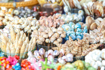 conch or seashells