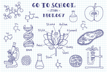 Biology. Hand sketches on the theme of biology. Note book page paper. Vector illustration.