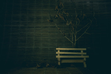 Still life bench wooden and dead tree concept halloween vintage tone