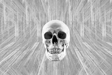 Black and white Skull human Halloween background
