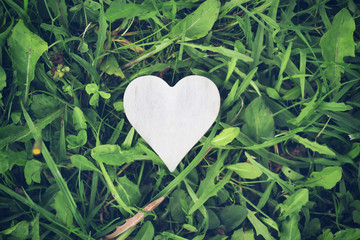 Heart shape on the grass background