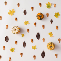 Autumn leaves pattern with pumpkins on white background.