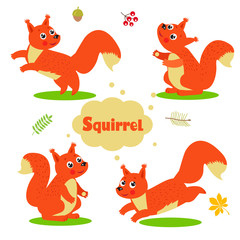 Funny Cartoon Squirrel Characters Set. Welcome Baby Vector Illustration. Cute Squirrel Pictures. Cute Squirrel Meme. Cute Squirrel Drawings. Squirrel Baby. Cute Pet.