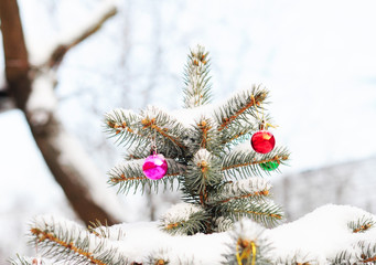 Christmas Tree Covered Snow with Colorful Christmas Balls Decoration