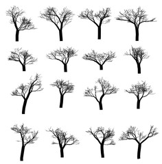 Winter tree set. Dry tree with fallen leaves. Dead tree silhouette. Vector illustration