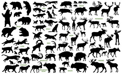 Big mammals of the northern lands vector silhouettes collection Wall mural