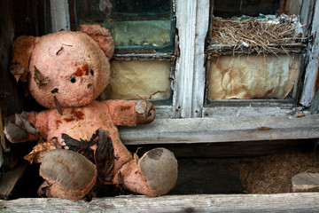 old toy bear in the ruins