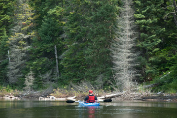single kayaker in blue kayak on lake
