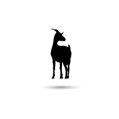 Goat web icon. Isolated illustration