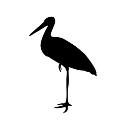 Stork vector illustration  black silhouette