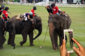 Hand of photographer with smart phone shooting image on blurred elephant polo racing background.