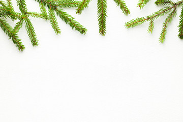 fir tree branches on white background, flat lay