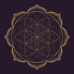 vector mandala sacred geometry illustration.