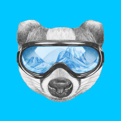 Portrait of Badger with ski goggles. Hand drawn illustration.