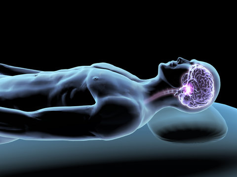 X-ray of Sleeping Man with Brain