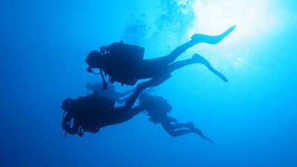 Silhouette scuba diving. Wall mural