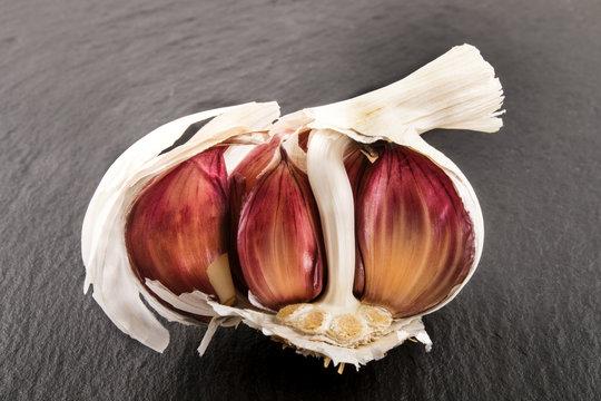 raw organic purple garlic on slate