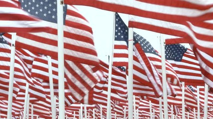 search photos america flag