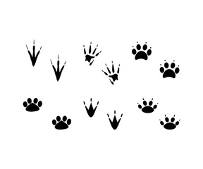 Animal Footprints Silhouettes Set Vector Icon