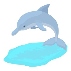 Dolphin icon. Cartoon illustration of dolphin vector icon for web