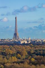 La tour Eiffel et  le bois de Boulogne vus du mont Valérien