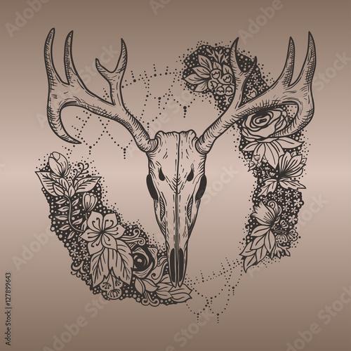 Stylized Deer Skull And Flowers Hand Drawn Original Illustration Design For Clothing Print Postcards