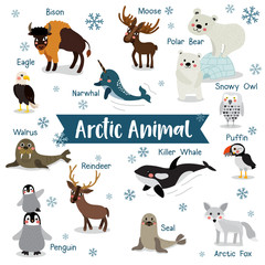 Arctic Animal cartoon on white background with animal name. Penguin, Polar Bear, Reindeer. Walrus. Moose. Snowy Owl. Arctic Fox. Eagle. Killer whale. Bison. Seal. Puffin. Narwhal. Vector illustration.