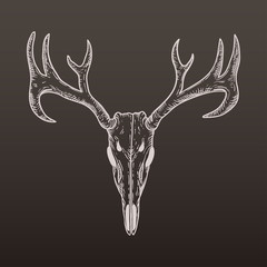 stylized Deer Skull sketch hand drawn original illustration. design for clothing print, postcards, cards, cover, tattoo design bohemian boho outline style. illustration on gradient background