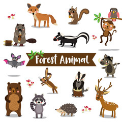 Forest Animal cartoon on white background. Bat. Owl. Fox. Deer. Bear. Raccoon. Monkey. Squirrel. Hedgehog. Skunk. Warthog. Beaver. Hare. Badger. Vector illustration.