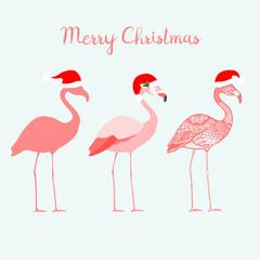 Three flamingos with Santa Claus hats, isolated vector illustration