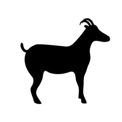 Silhouette of horny goat standing on a white background.
