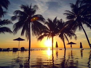 Beautiful tropical landscape at sunset with palm trees and infinity swimming pool