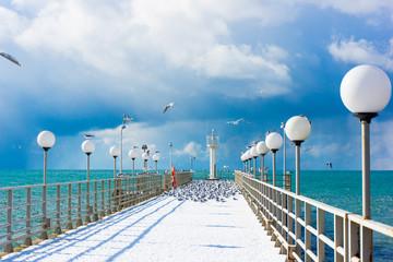 sea and blue sky. Sea birds sitting on pier. winter beach. Winte