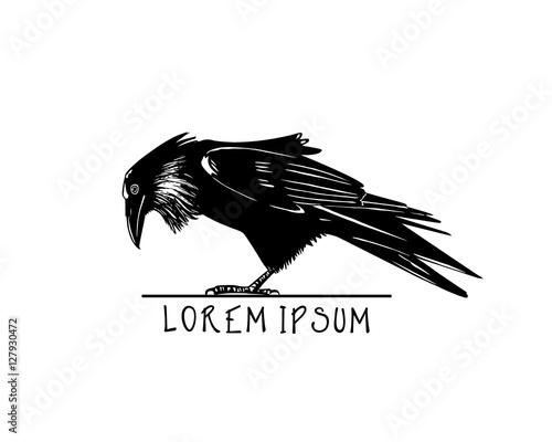 Beste Spielothek in Raven finden