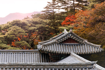 An amazing top view of the old Korean traditional house and roofs among mountains and forest