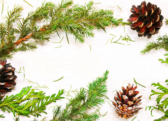 background of tree branches, cones on a white background wooden