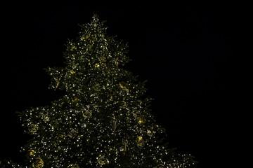 Beleuchteter Weihnachtsbaum mit goldenen Kugeln