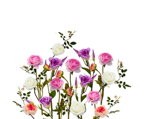 composition of white, pink roses, flowers and leaves isolated on white background. Flat lay, top view.