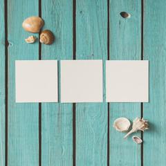 Three blank photos on wooden summer background