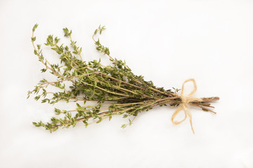 Thyme tied in a bunch isolated against white