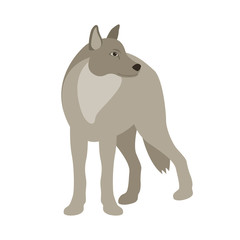 wolf vector illustration style Flat