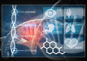 Medicine user interface,