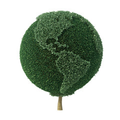 Topiary bush shaped as the Earth facing the Americas
